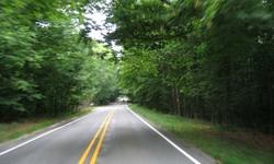 Michigan_road